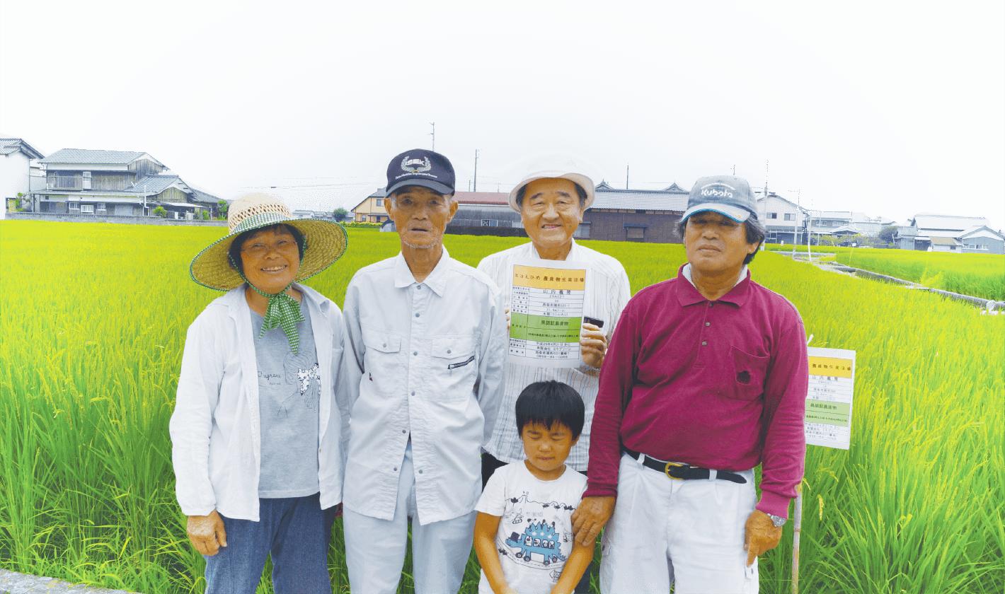 【愛媛県認証農産物】愛媛県こしひかりの生産者
