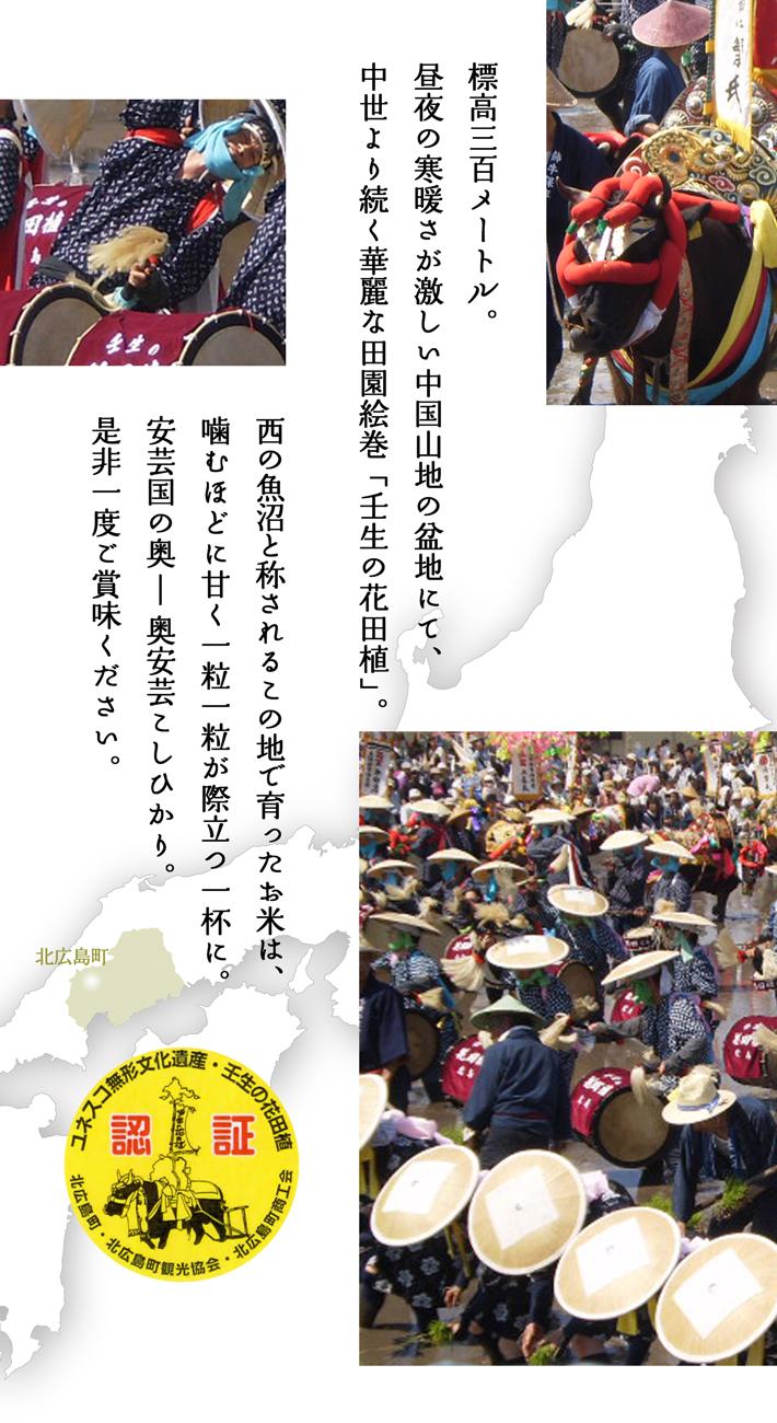 【世界無形文化遺産】壬生の花田植